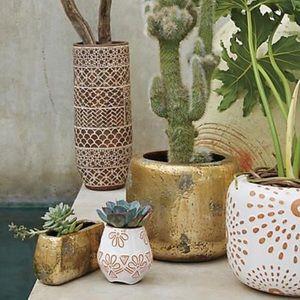 Gold plant pot